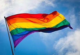 rainbow flag lgbt 274x189