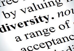 diversity book image 390x234
