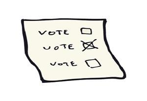 Vote in elections