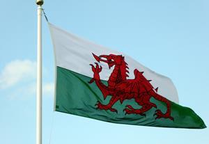 Calling our Welsh members - accountants and probate work